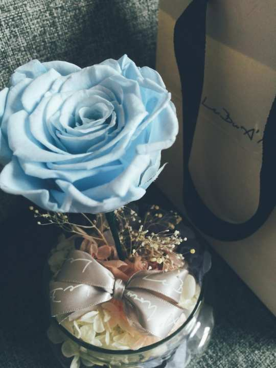 Le Bu A'mour Romeo & Juliet Light Blue Rose (S)