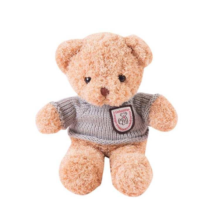 Kawaii Cute Bear Design Record Repeat Stuffed Plush Toys Recording Toys